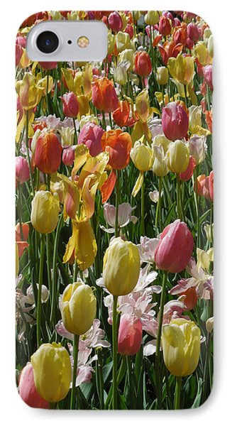 Kathy's Tulips Iv IPhone Case by Peg Toliver