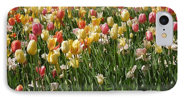 Kathy's Tulips IPhone Case by Peg Toliver