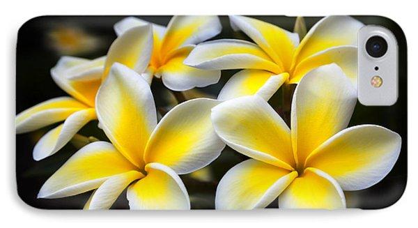Kauai Plumerias Large Canvas Art, Canvas Print, Large Art, Large Wall Decor, Home Decor, Photograph IPhone Case by David Millenheft