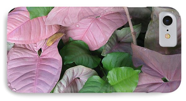 IPhone Case featuring the photograph Kauai  Pinks by Carol Sweetwood