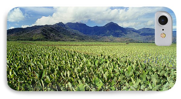 Kauai, Wet Taro Farm Phone Case by Bob Abraham - Printscapes