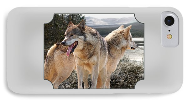 Keeping Watch - Pair Of Wolves IPhone Case by Gill Billington