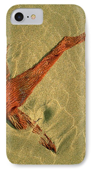 Kelp 2 IPhone Case by Art Shimamura