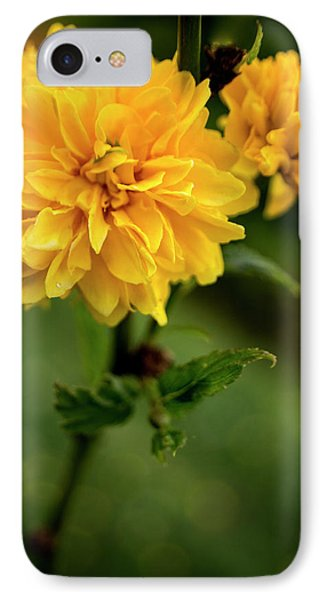 Kerria IPhone Case by Chrystal Mimbs
