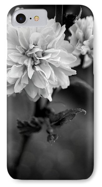 Kerria In Black And White IPhone Case by Chrystal Mimbs
