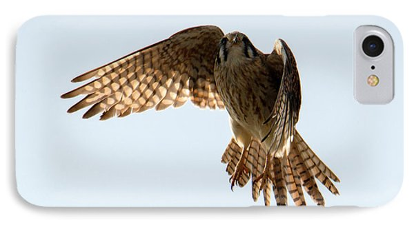 IPhone Case featuring the photograph Kestrel Hover by Mike Dawson