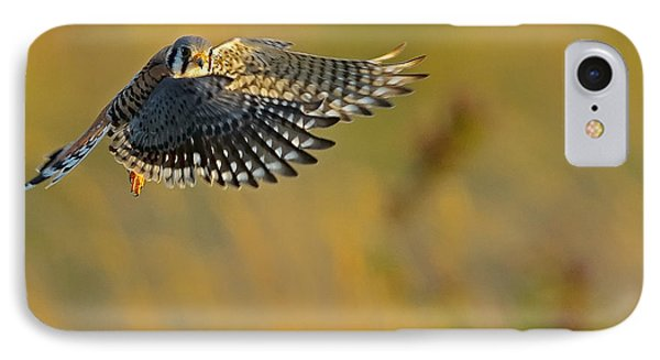 Kestrel Takes Flight IPhone Case