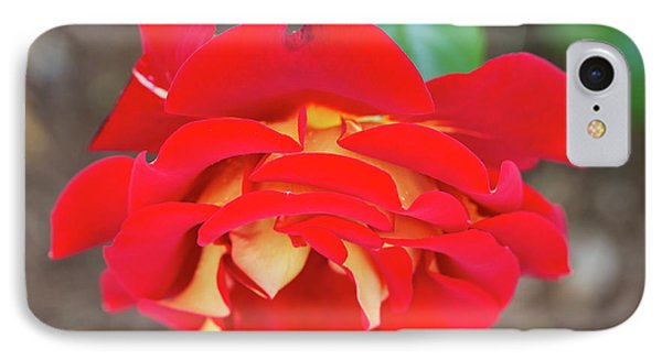 Ketchup And Mustard Rose Phone Case by Louise Heusinkveld