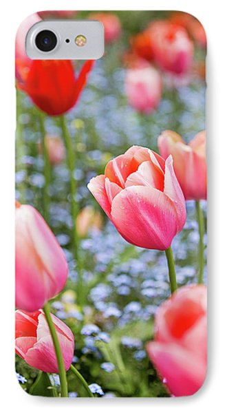 IPhone Case featuring the photograph Keukenhof Tulips - Amsterdam by Melanie Alexandra Price
