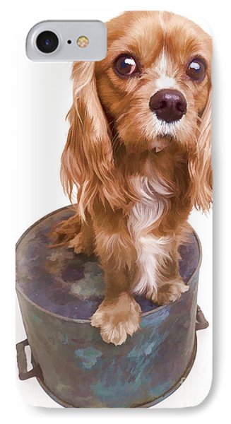 King Charles Spaniel Puppy Phone Case by Edward Fielding