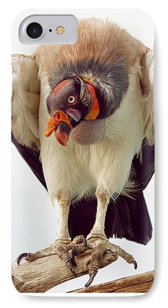 IPhone Case featuring the photograph King Of The Birds by Cheri McEachin