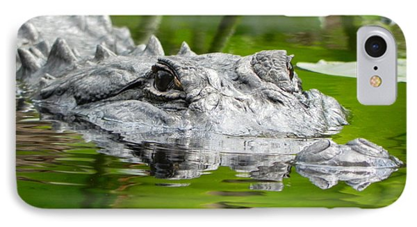 King Of The Florida Jungle Phone Case by Jack Norton
