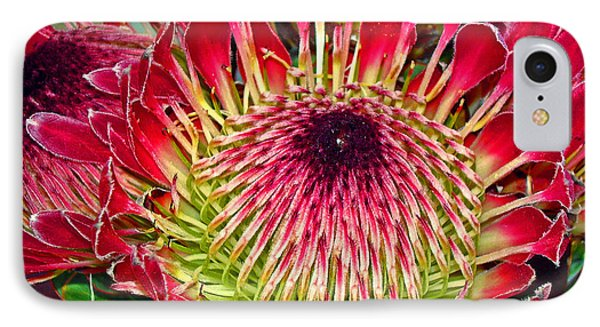 King Protea Phone Case by Michael Durst