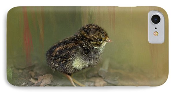 King Quail Chick IPhone Case