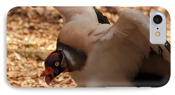 King Vulture 1 IPhone Case by Chris Flees