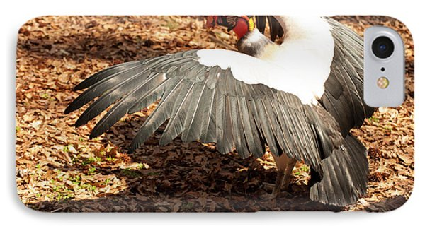 King Vulture 3 Strutting IPhone Case by Chris Flees