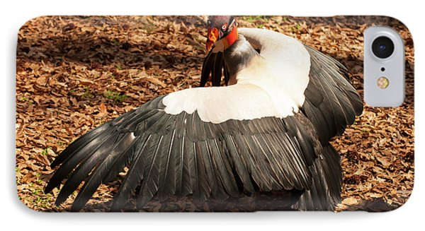King Vulture 4 Strutting IPhone Case by Chris Flees