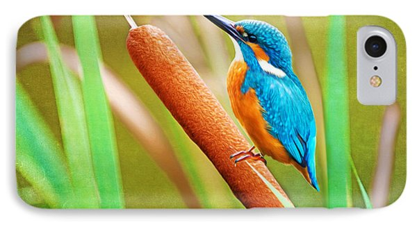 Kingfisher iPhone 7 Case - Kingfisher by Laura D Young