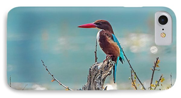 Kingfisher On A Stump IPhone Case