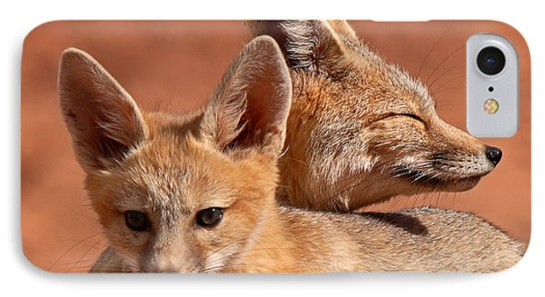 Kit Fox Pup Snuggling With Mother IPhone Case by Max Allen