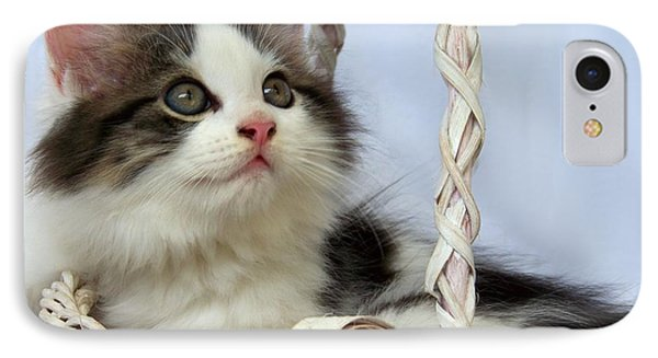 Kitten In Basket Phone Case by Jai Johnson