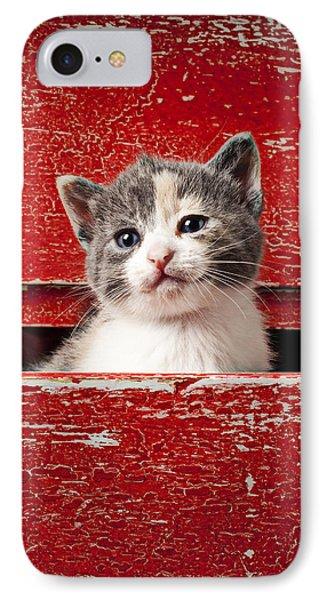 Kitten In Red Drawer Phone Case by Garry Gay