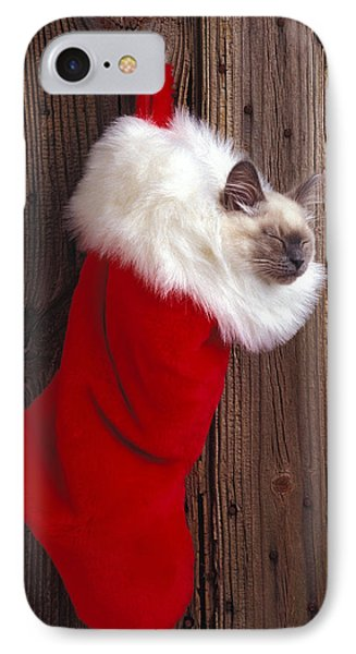 Kitten In Stocking Phone Case by Garry Gay