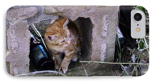 Kitten In The Junk Yard IPhone Case