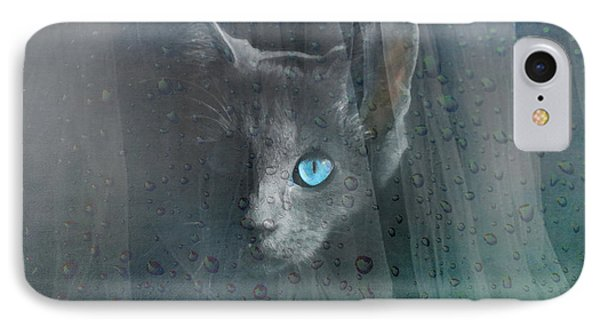 IPhone Case featuring the photograph Kitty At The Window by Chris Armytage