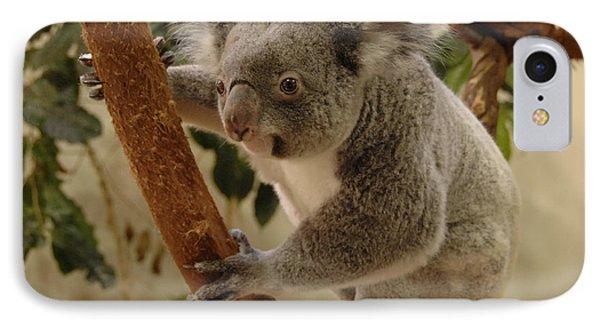 Koala Bear II IPhone Case