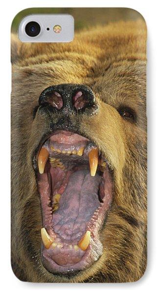 Kodiak Bear Ursus Arctos Middendorffi Phone Case by Matthias Breiter