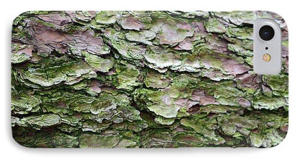 Korean Pine No. 5-1 IPhone Case