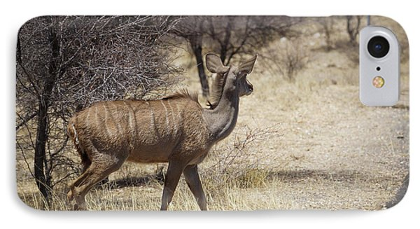 IPhone Case featuring the photograph Kudu Crossing by Ernie Echols