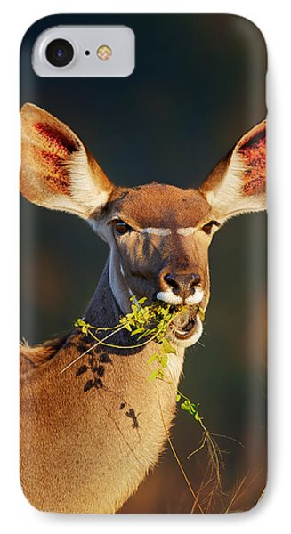 Kudu Portrait Eating Green Leaves IPhone Case by Johan Swanepoel