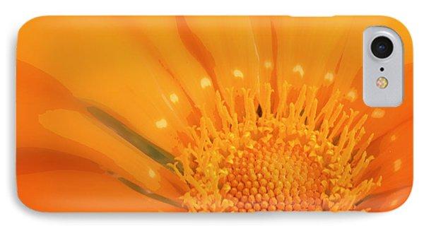 La Fleur D'orange IPhone Case