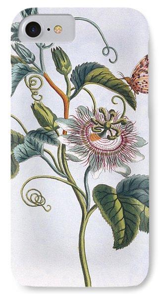 La Grenadille Or Le Maracot   Blue Passion Flower IPhone Case by Pierre-Joseph Buchoz