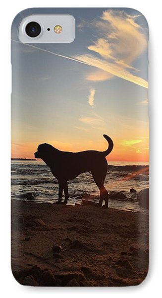 Labrador Dreams IPhone Case