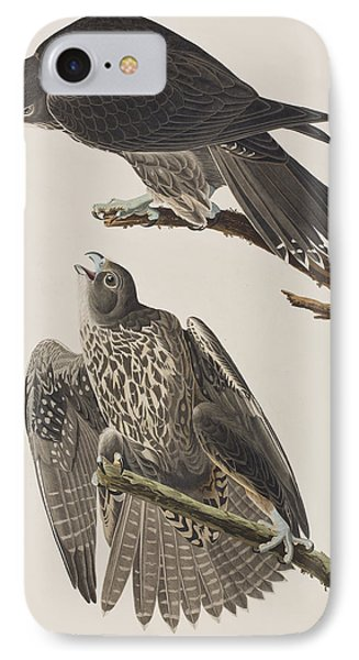 Labrador Falcon IPhone 7 Case