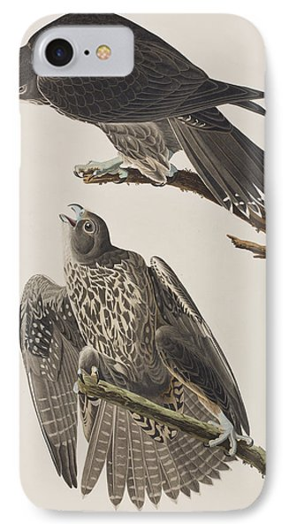 Labrador Falcon IPhone 7 Case by John James Audubon