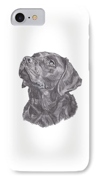 Labrador Retriever Charcoal Drawing IPhone Case