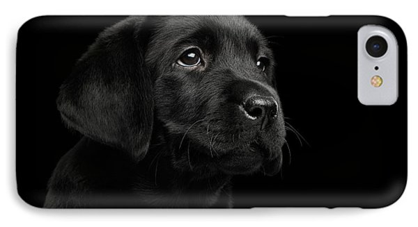 Labrador Retriever Puppy Isolated On Black Background IPhone Case