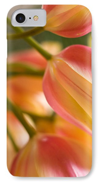 Labrynth Of Spring IPhone Case by Mike Reid