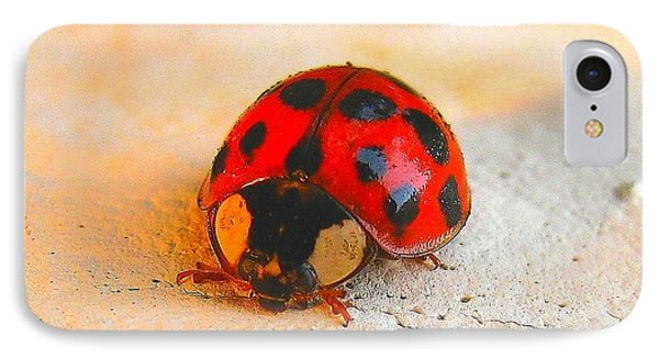 Lady Bug 2 IPhone Case by John King