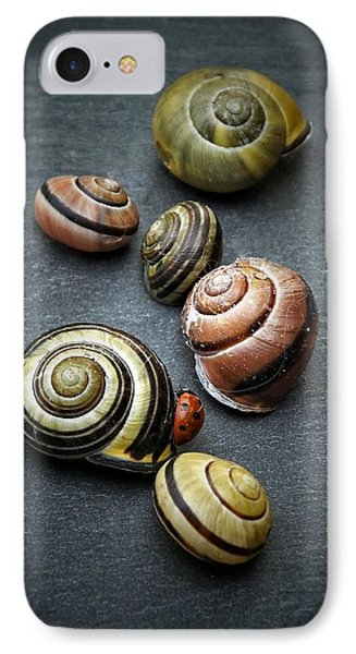 Lady Bug And Snail Shells 1 IPhone Case by Karen Stahlros