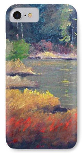 Lagoon IPhone Case by Nancy Merkle