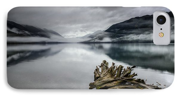 IPhone Case featuring the photograph Lake Crescent Relic by Dan Mihai