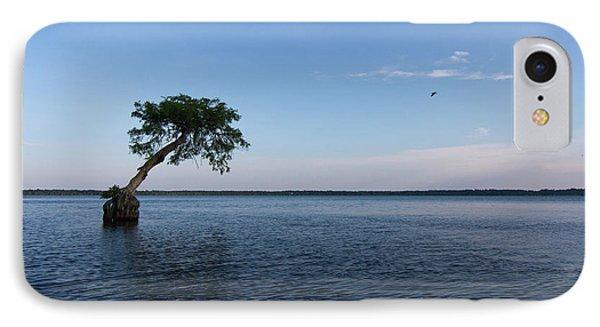 Lake Disston Cypress #2 IPhone Case