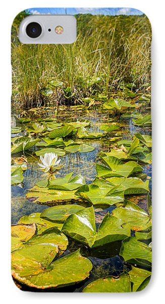 Lake Water Lily  IPhone Case by LeeAnn McLaneGoetz McLaneGoetzStudioLLCcom