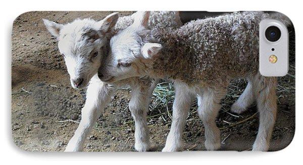 Lambs IPhone Case by Kae Cheatham