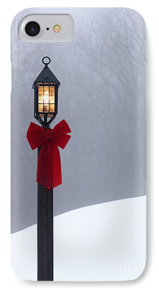 Lamppost In Snow Phone Case by Will and Deni McIntyre